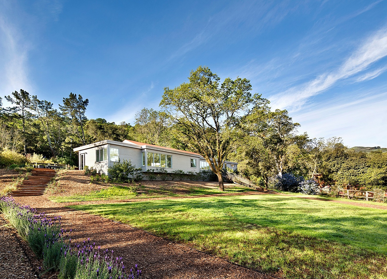 Hillside modern home