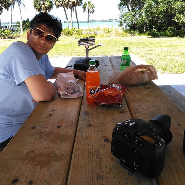 Picnic, Manatees, and a beautiful dock. Great way to spend much needed break from recent moving issues. . . . . #swfl #manatee #dockside #cherokeepark #florida #wildlifephotography #palmtrees #gulfcoastlife #lifestyle #picnic #funtime #picoftheday