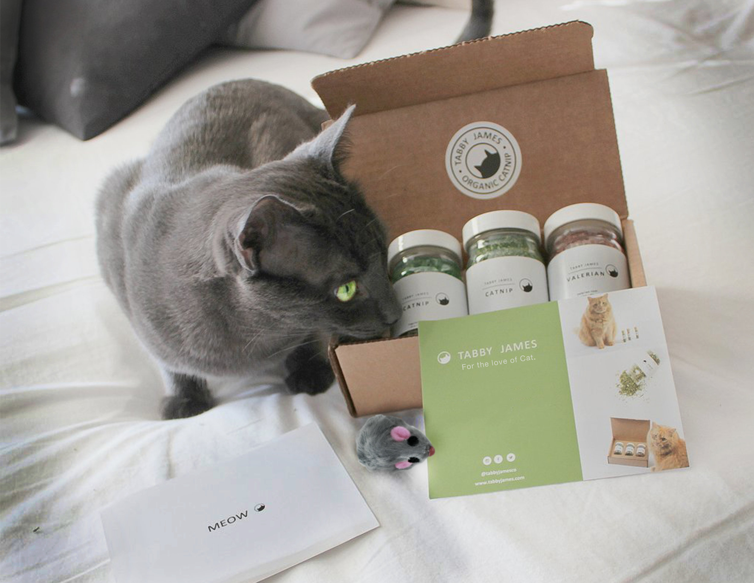 Catnip is finite. To help drive online sales, we created a subscription box that makes sure cat owners never run out of 'nip, while also gifting the subscriber with cat accessories.