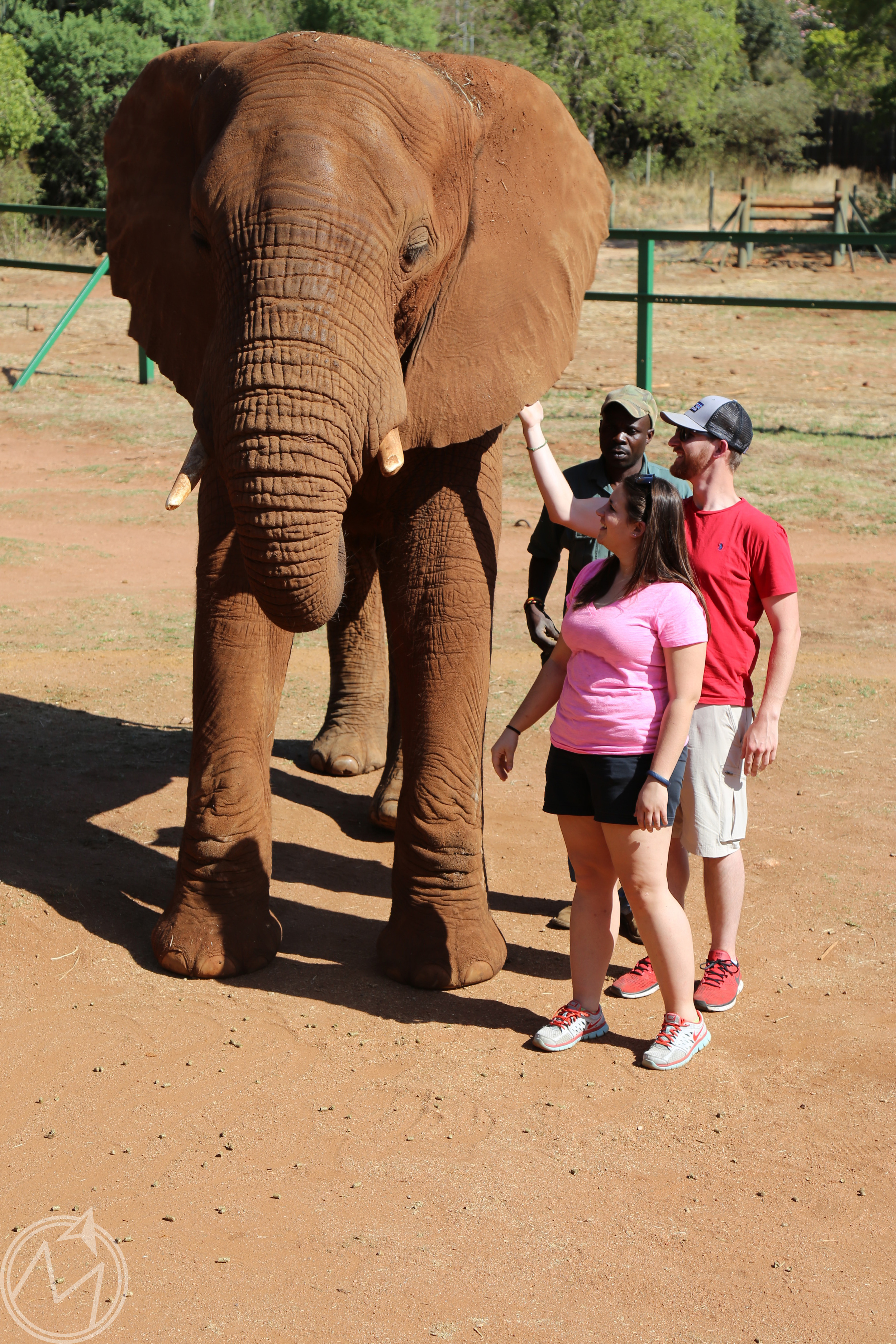 mark and leah getting acquainted with a new friend.