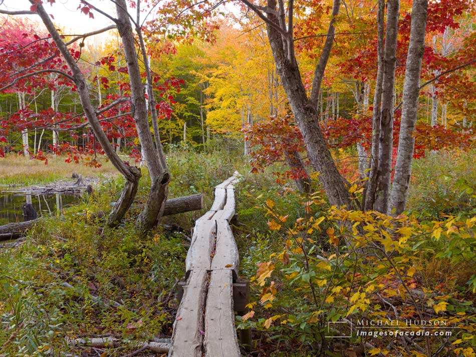 Kane Path/ Canon Brook Trail, October 2016
