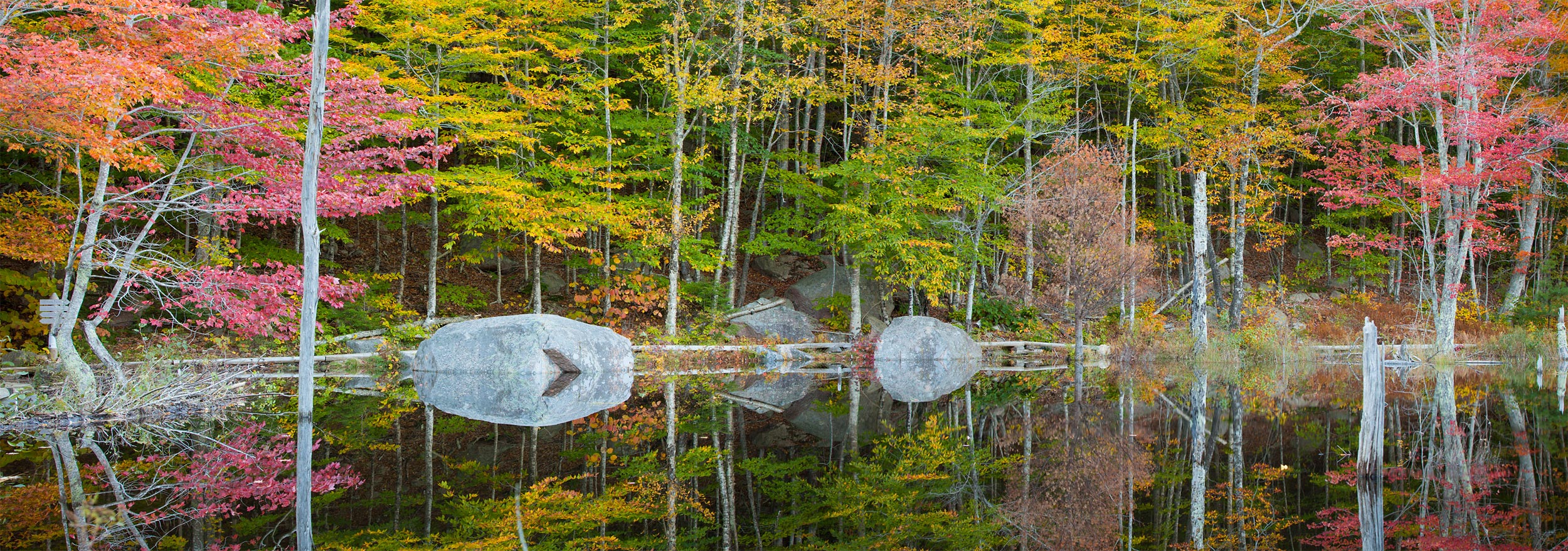 Small Pond on the Canon Brook Trail, Acadia National Park, Maine