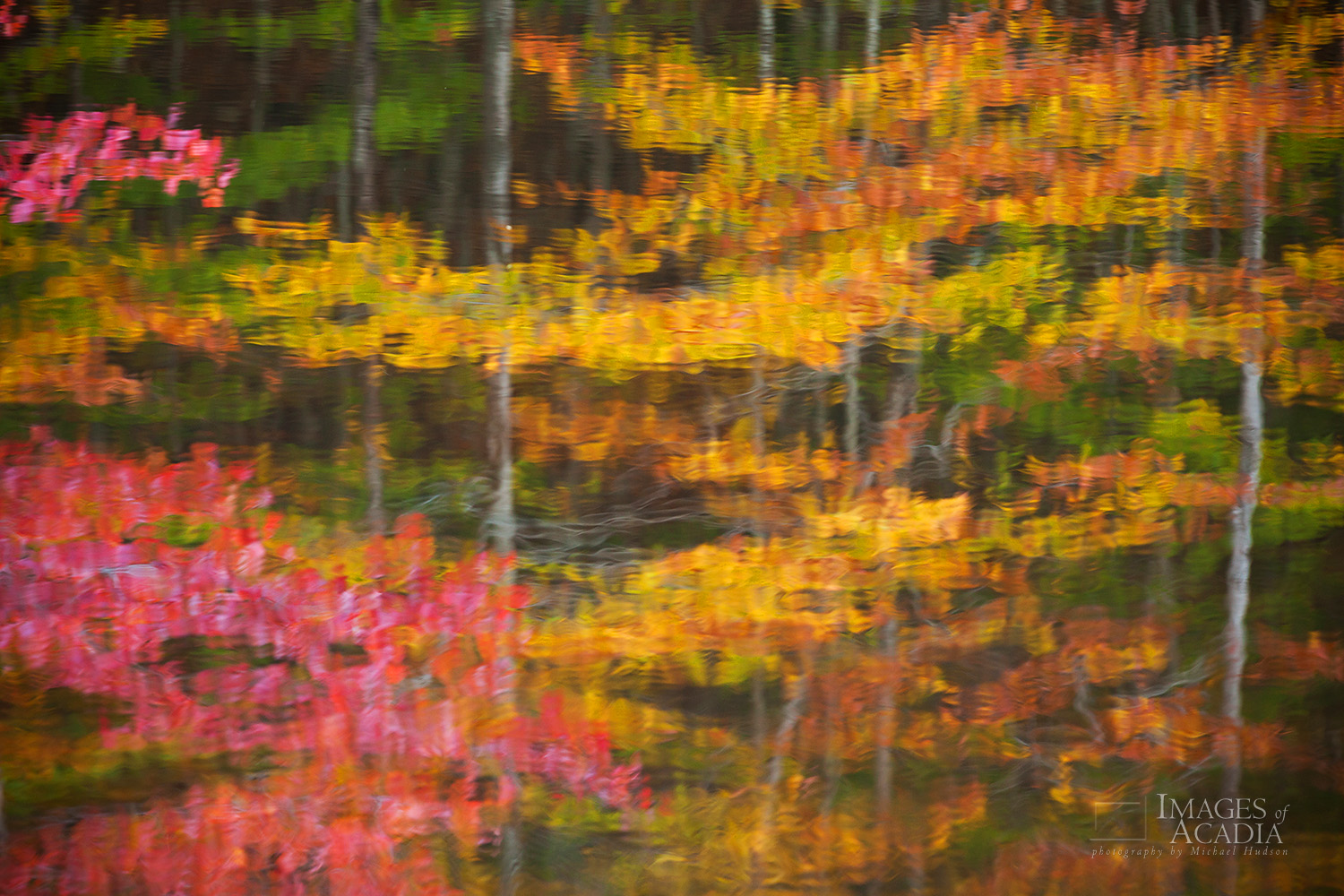 Reflections in small pond, Canon Brook Trail