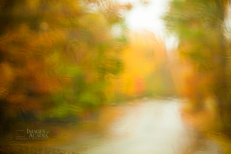 Rain on car window and autumn foliage