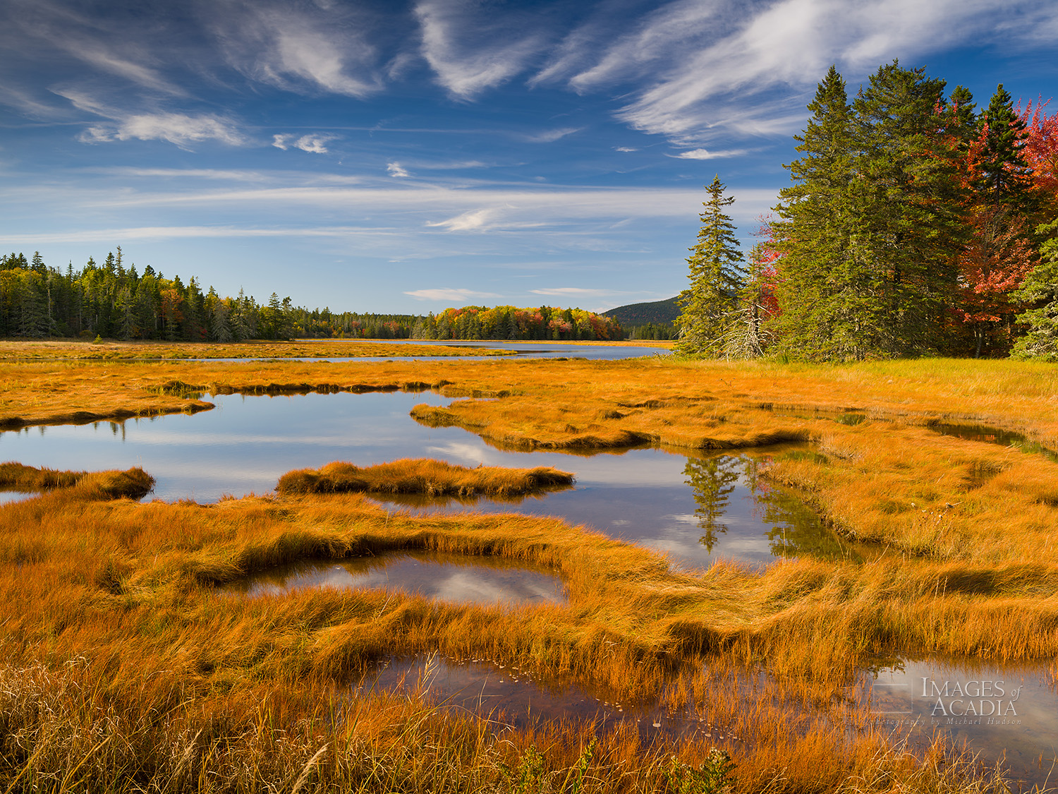 Autumn Afternoon, Bass Harbor Marsh