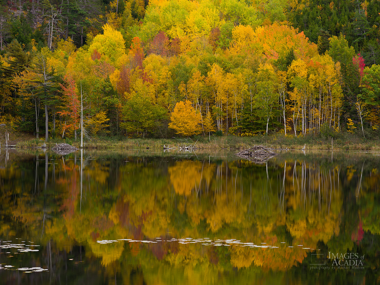 Autumn foliage reflected in Beaver Dam Pond