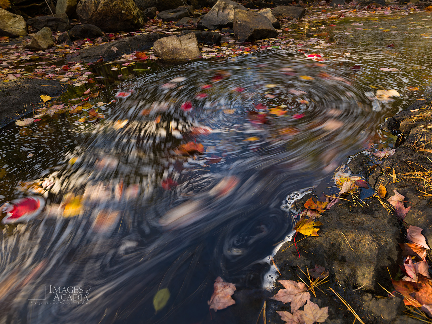 Swirling leaves on Duck Brook