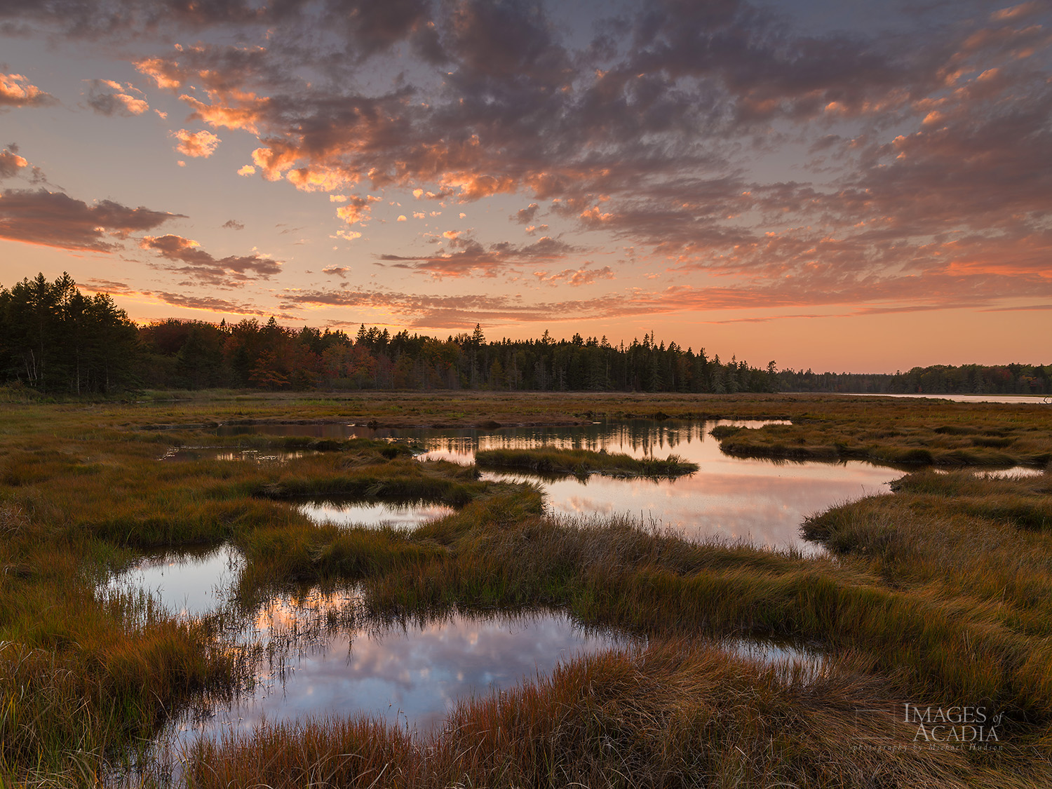 Sunset, Bass Harbor Marsh