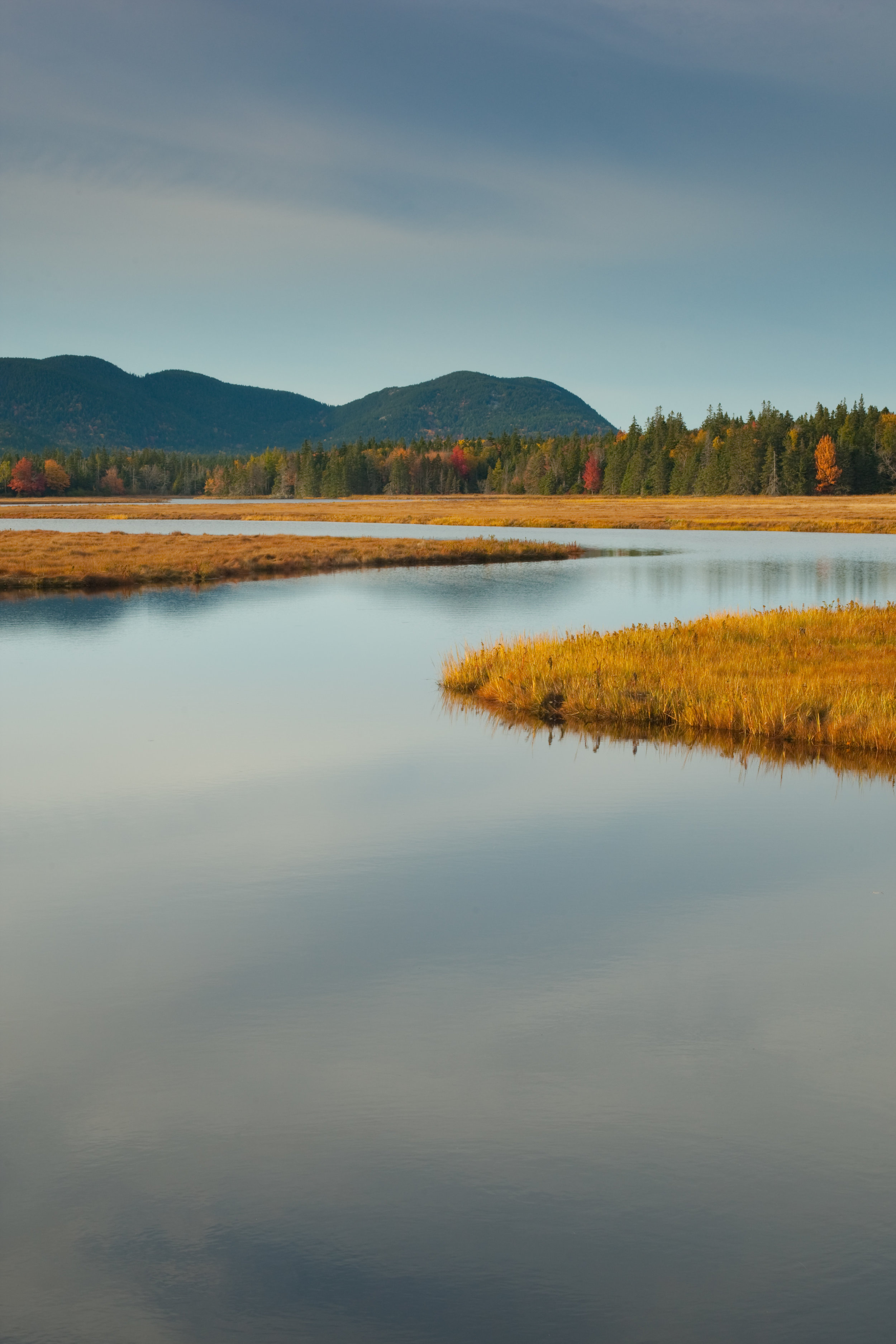 Bass Harbor Marsh (looking towards Bernard Mountain and Mansell