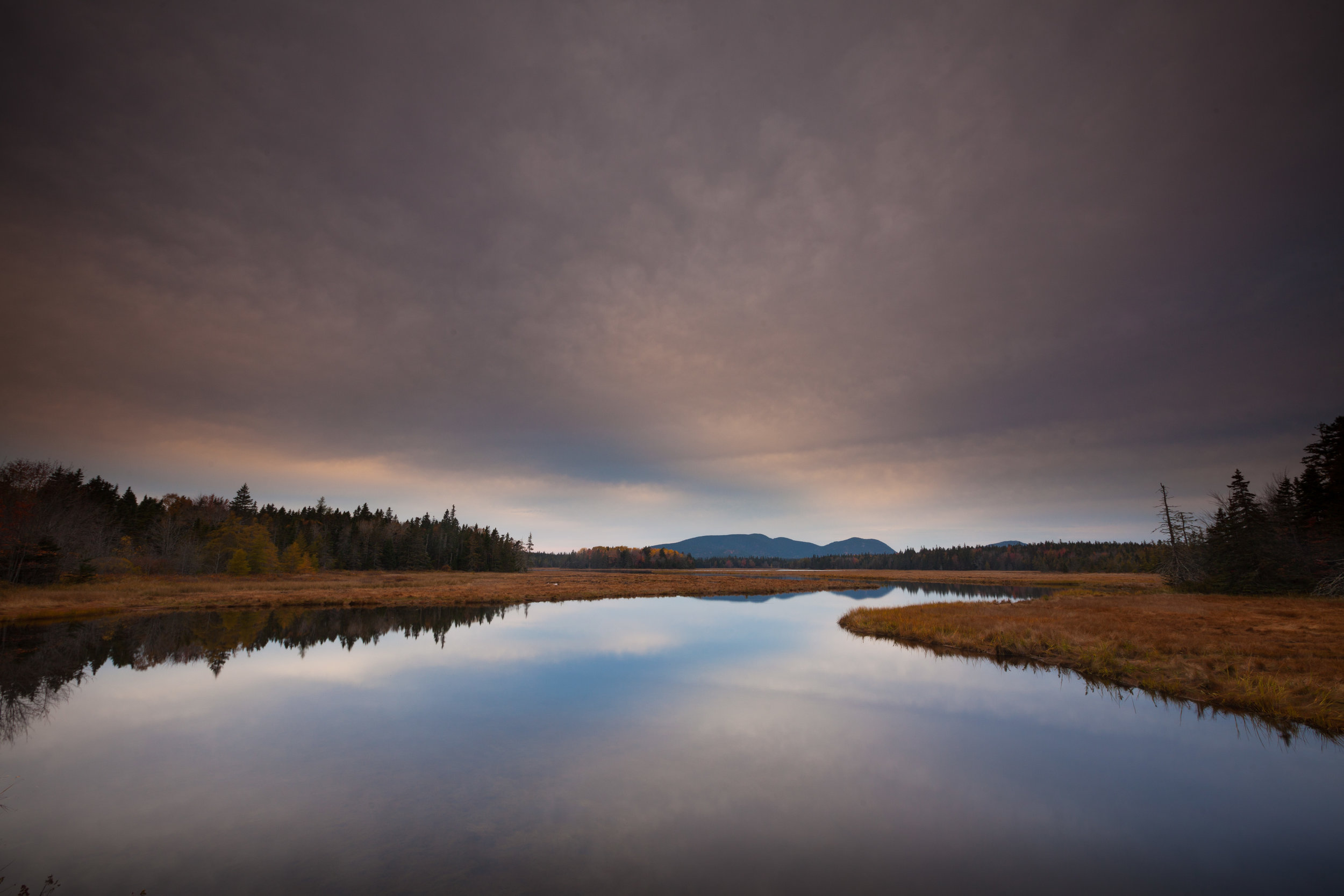 Bass Harbor Marsh and the view towards Bernard Mountain and Mans
