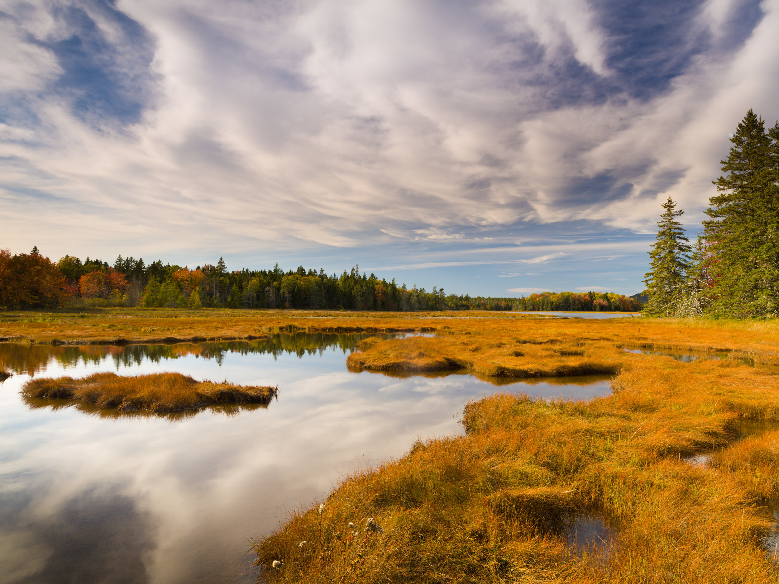 Autumn Afternoon, Bass Harbor Marsh, Acadia National Park, Maine