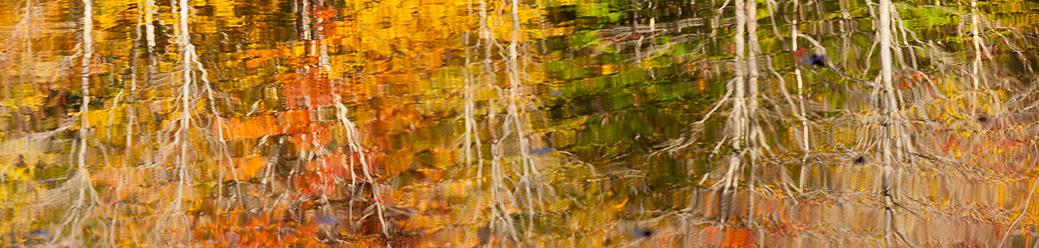 Autumn Reflections in Pond on the Canon Brook Trail, Acadia