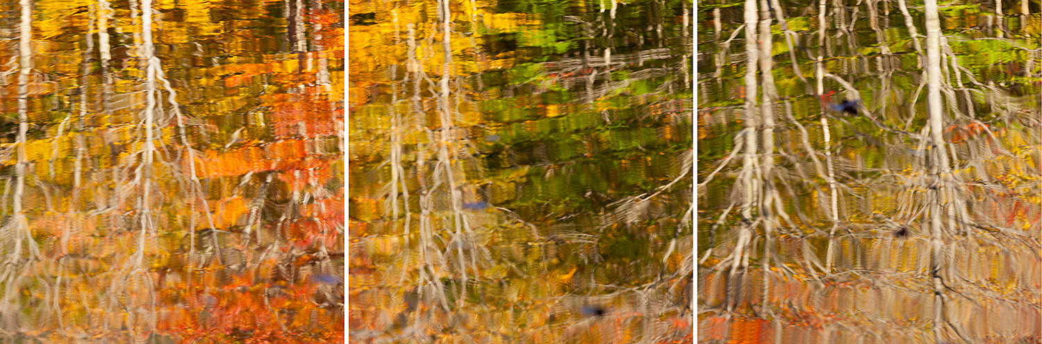Autumn Reflections in Pond on the Canon Brook Trail, Acadia National Park
