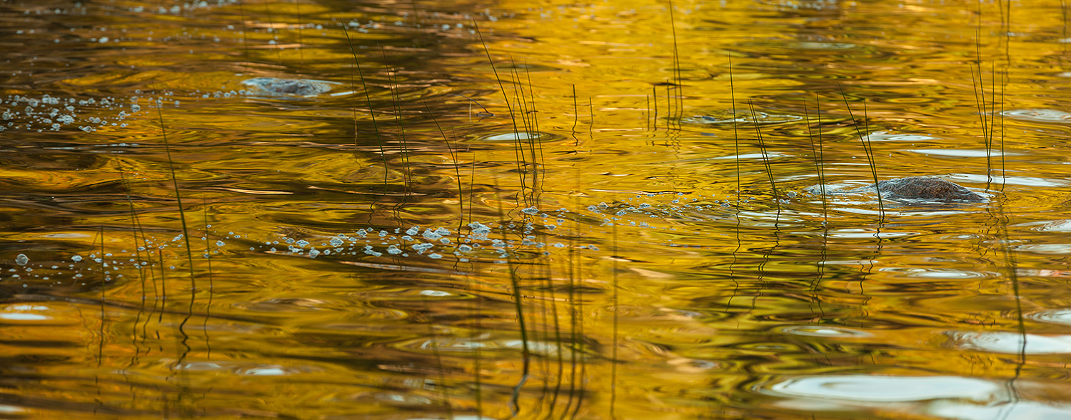 Early morning ripples and reflections in Jordan Pond, Acadia Nat