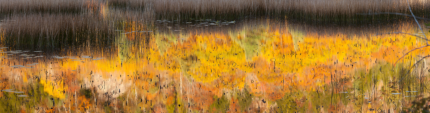 Early morning reflections of Dorr Mountain in the Tarn, Acadia N
