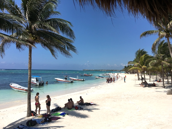 Tulum is a great place for snorkeling. In this beach in particular you get the chance to swing with turtles. No need to pay for a tour or a guide. You will find them, guarantee.We got breakfast in one of the hotels with ocean views and spent all morning in the beach.