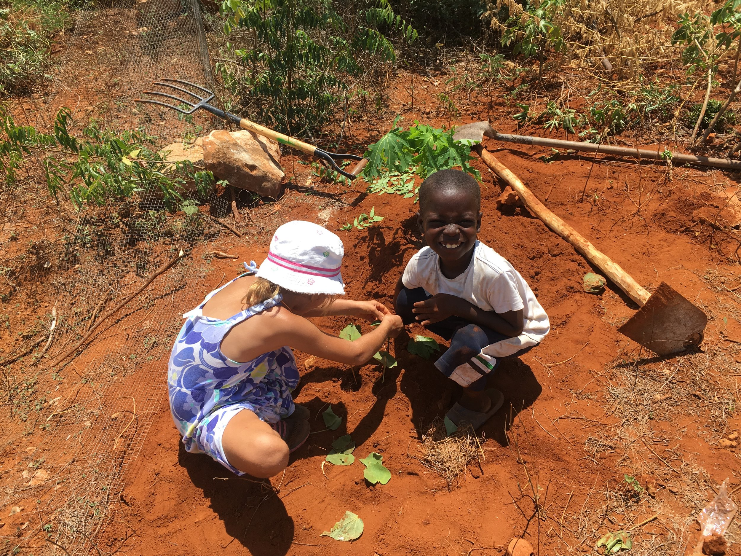 Agriculture   Fighting poverty with seeds of hope