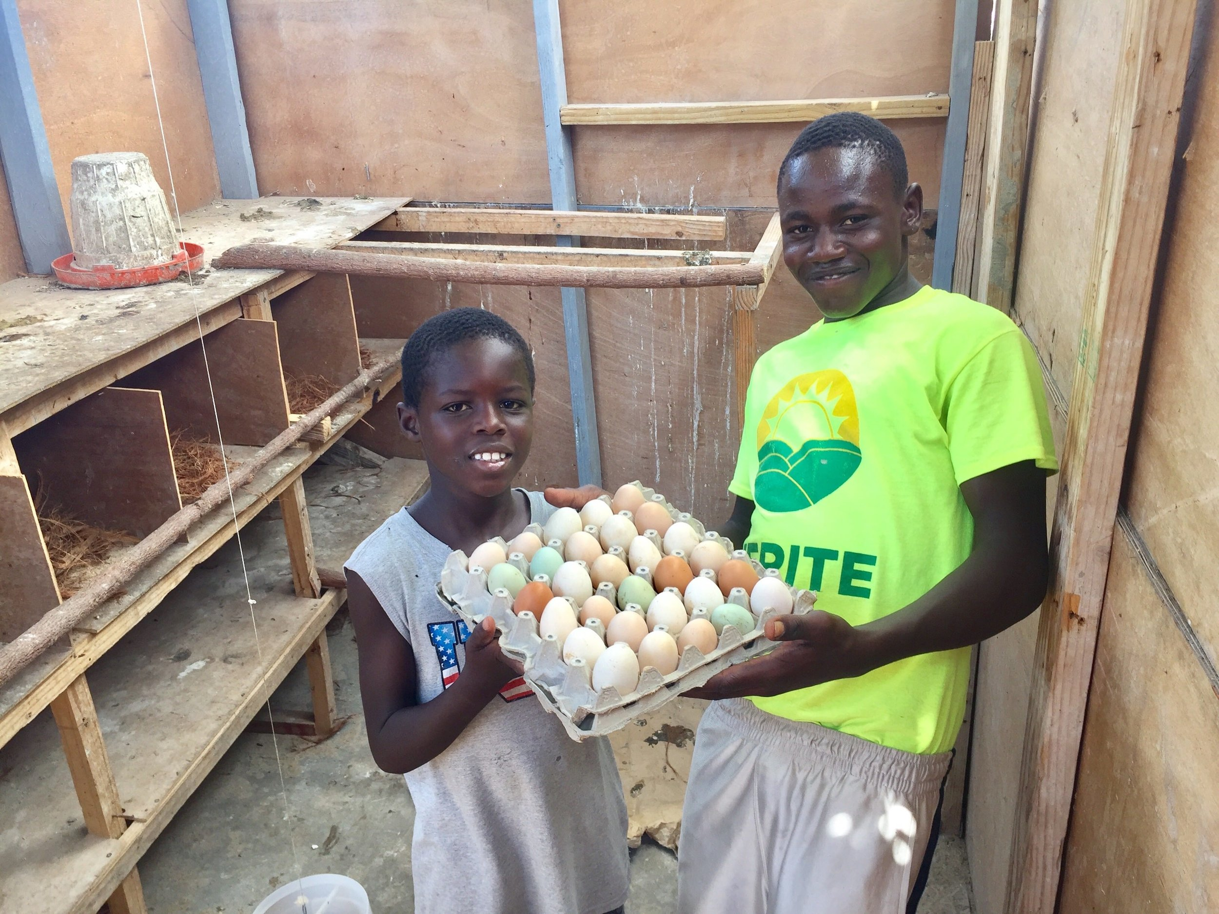 "Sustainable Food Provision  Working toward ""An Egg a Day"" for Kids"
