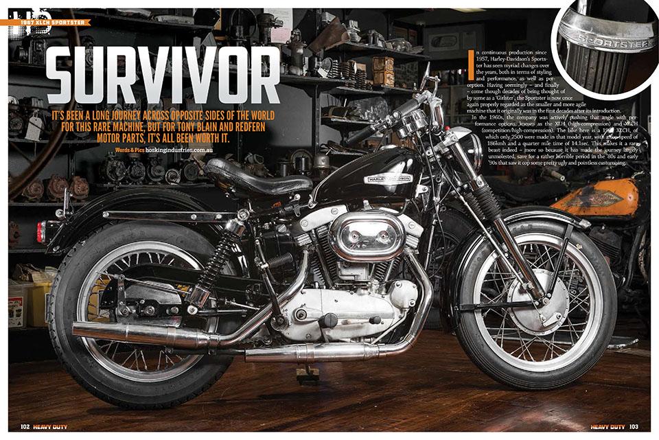 HD144-Survivor.jpg