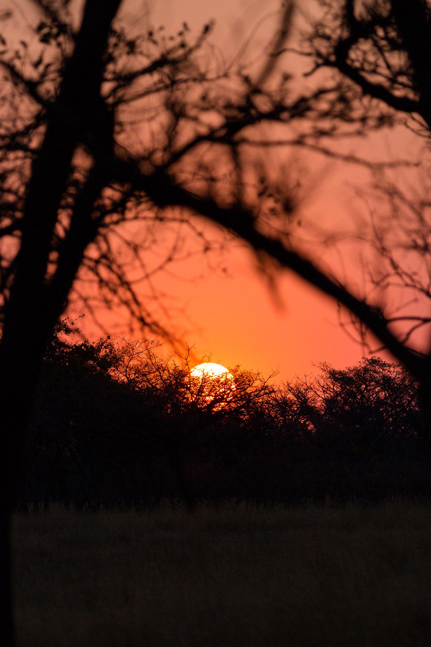 The magic of Africa -