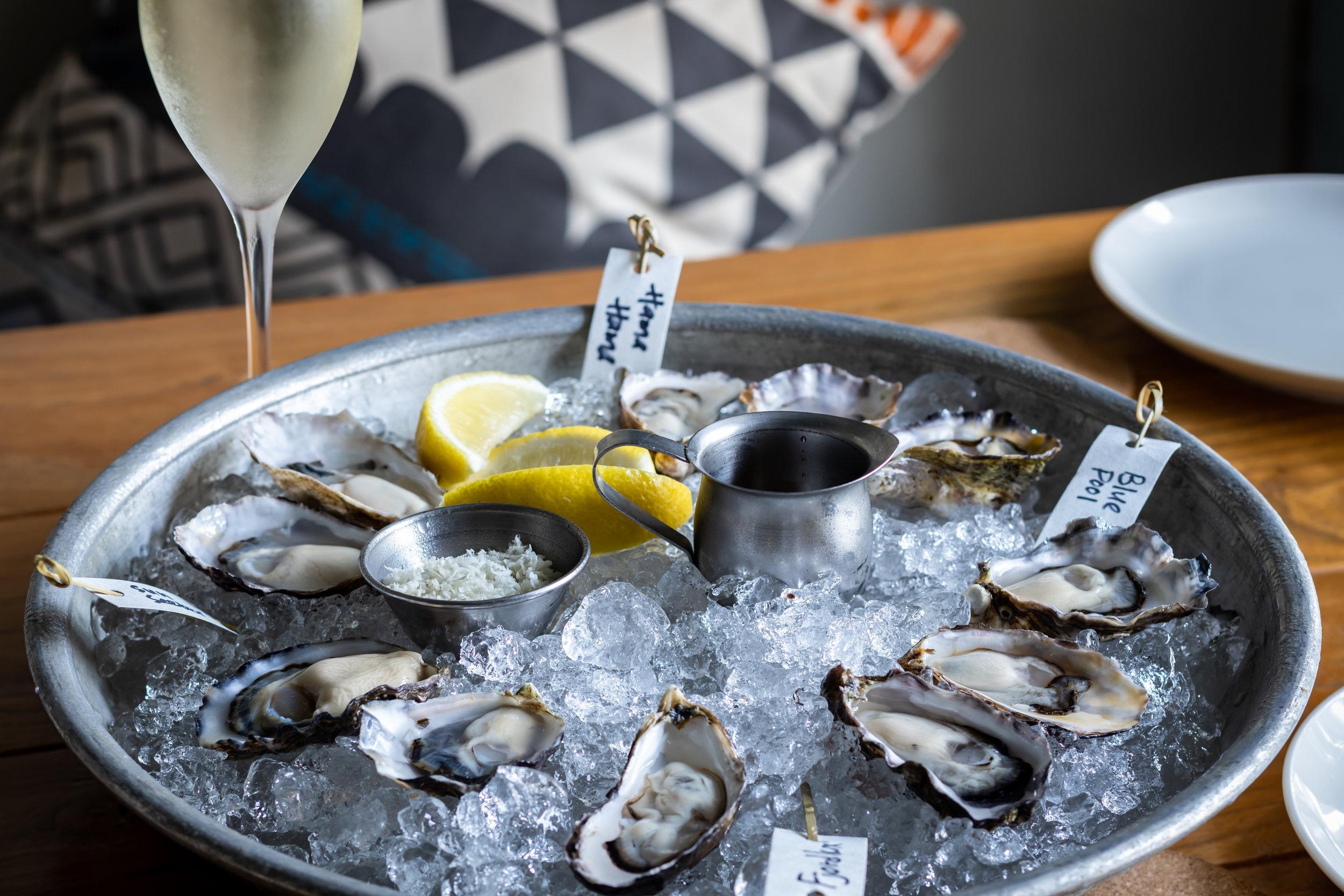 Oysters 6.jpg