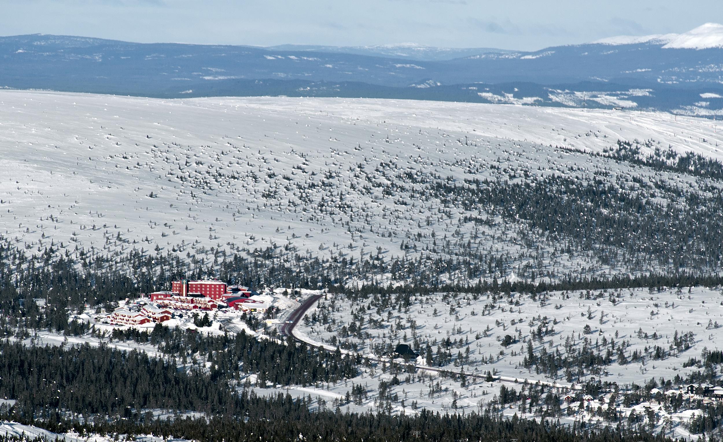 """""""HÖGIS"""" i vinterskrud"""