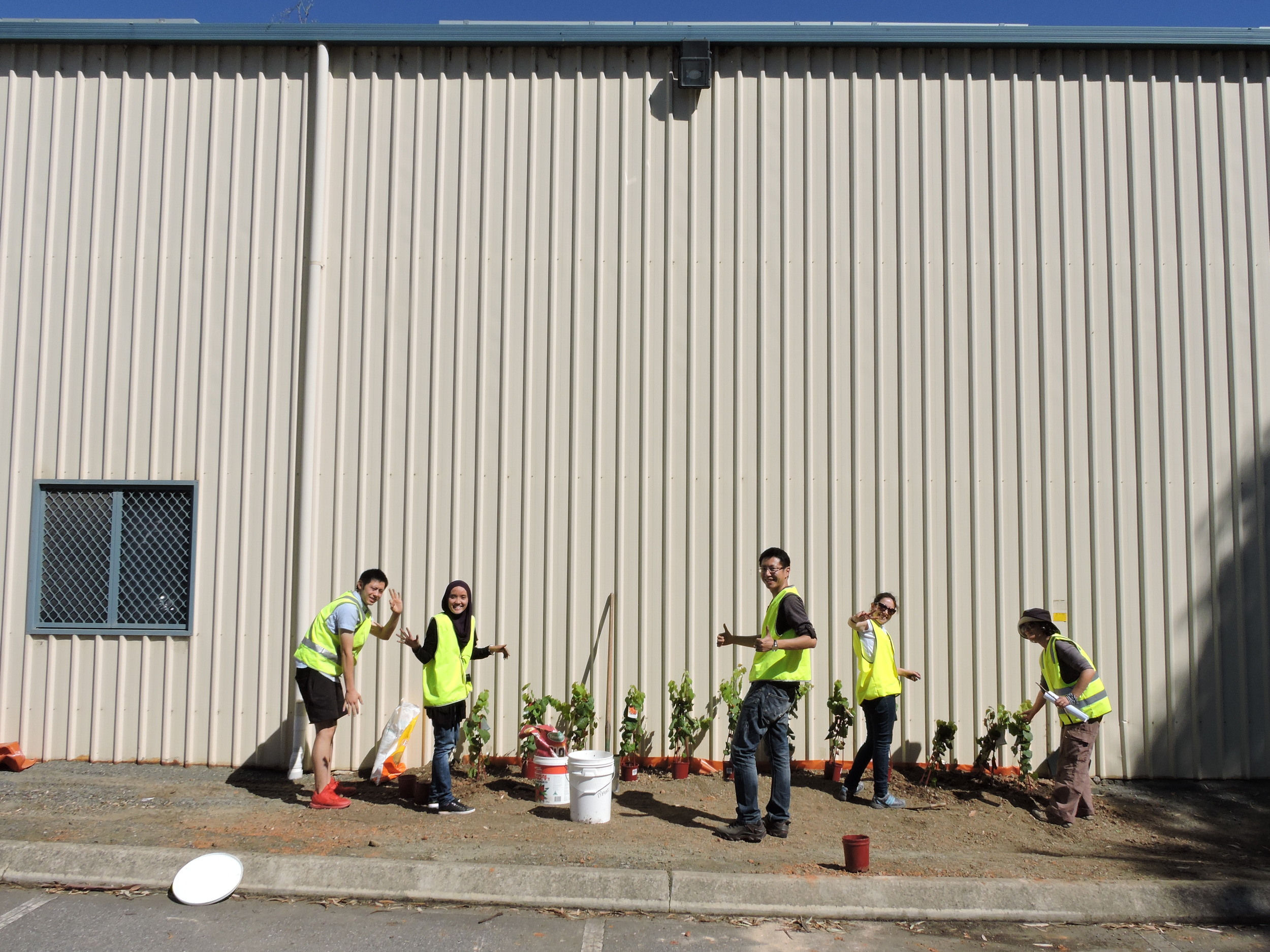 20160321_JQF04_urban planting (46).JPG