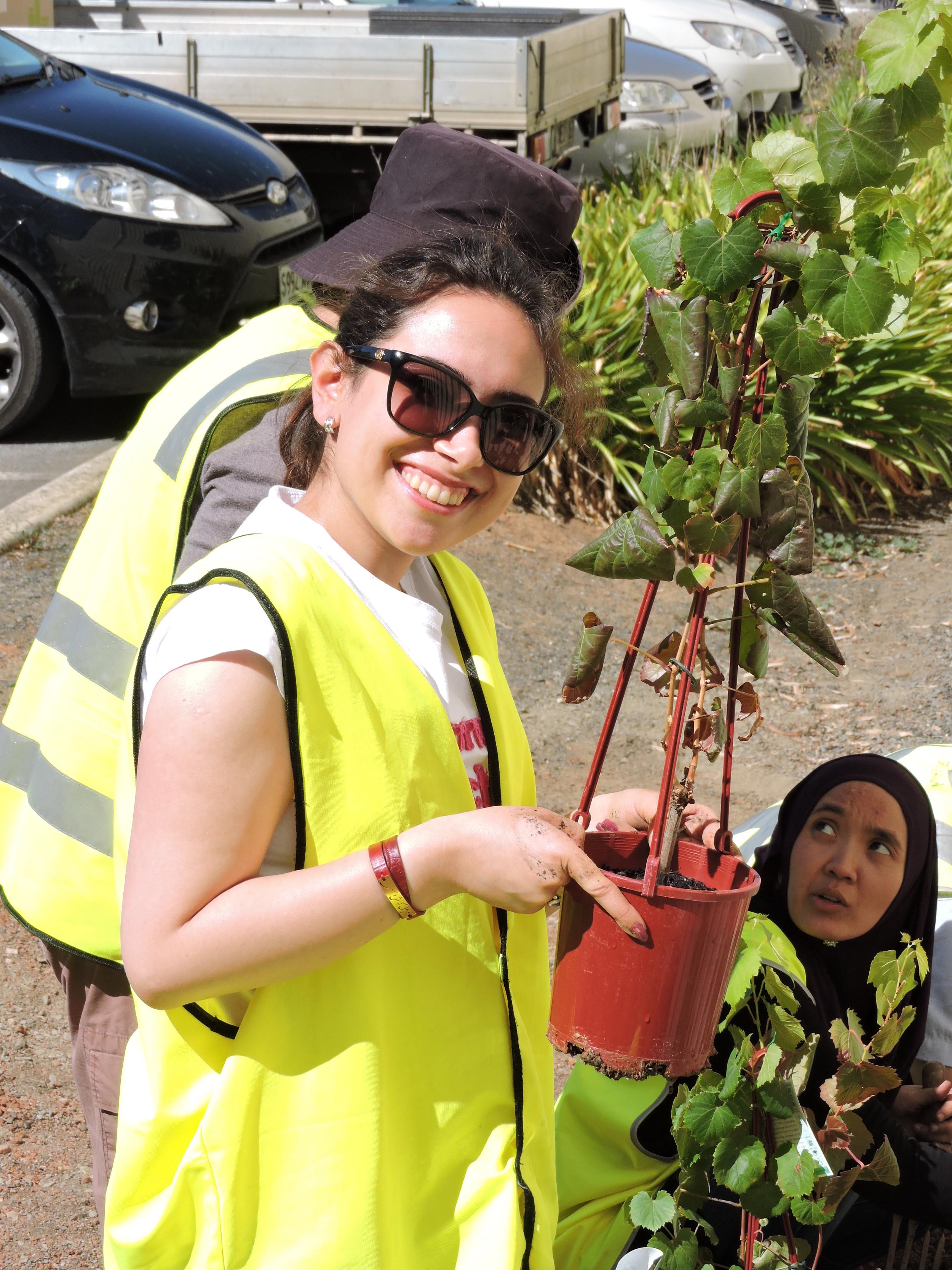 20160321_JQF04_urban planting (49).JPG