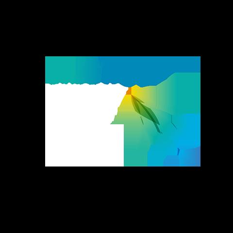 Bluefish logo.png