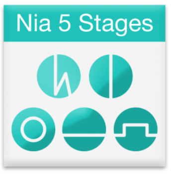 Nia 5 stages