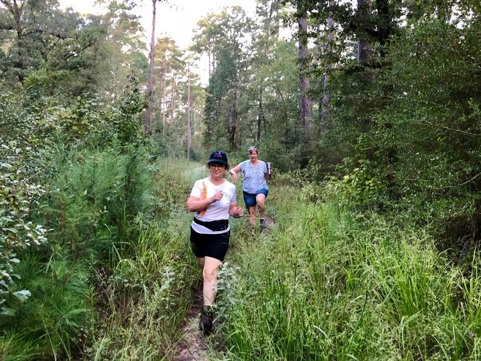 Hiking National Forrest