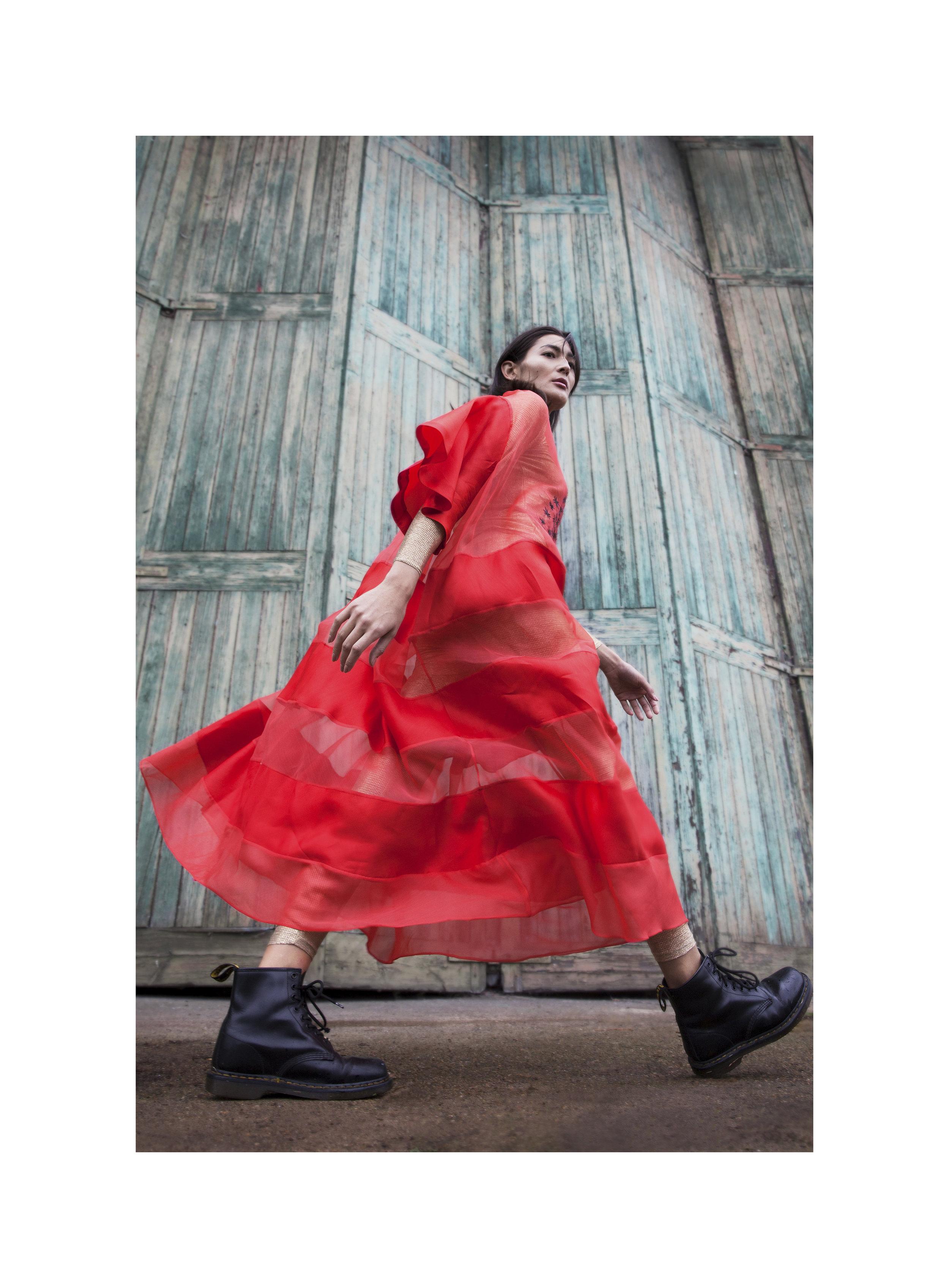 red dress boarder.jpg
