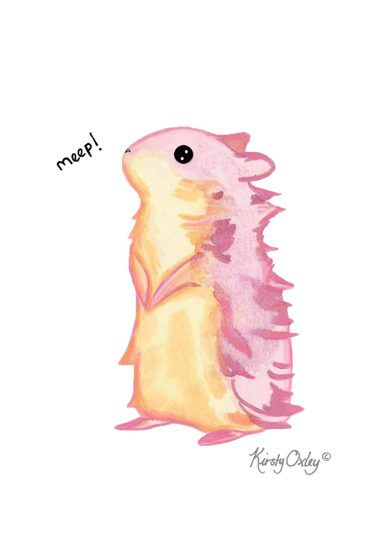 hamster for website.jpg