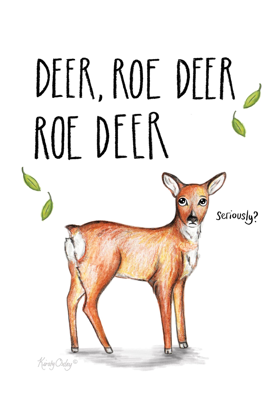 roe deer web.jpg