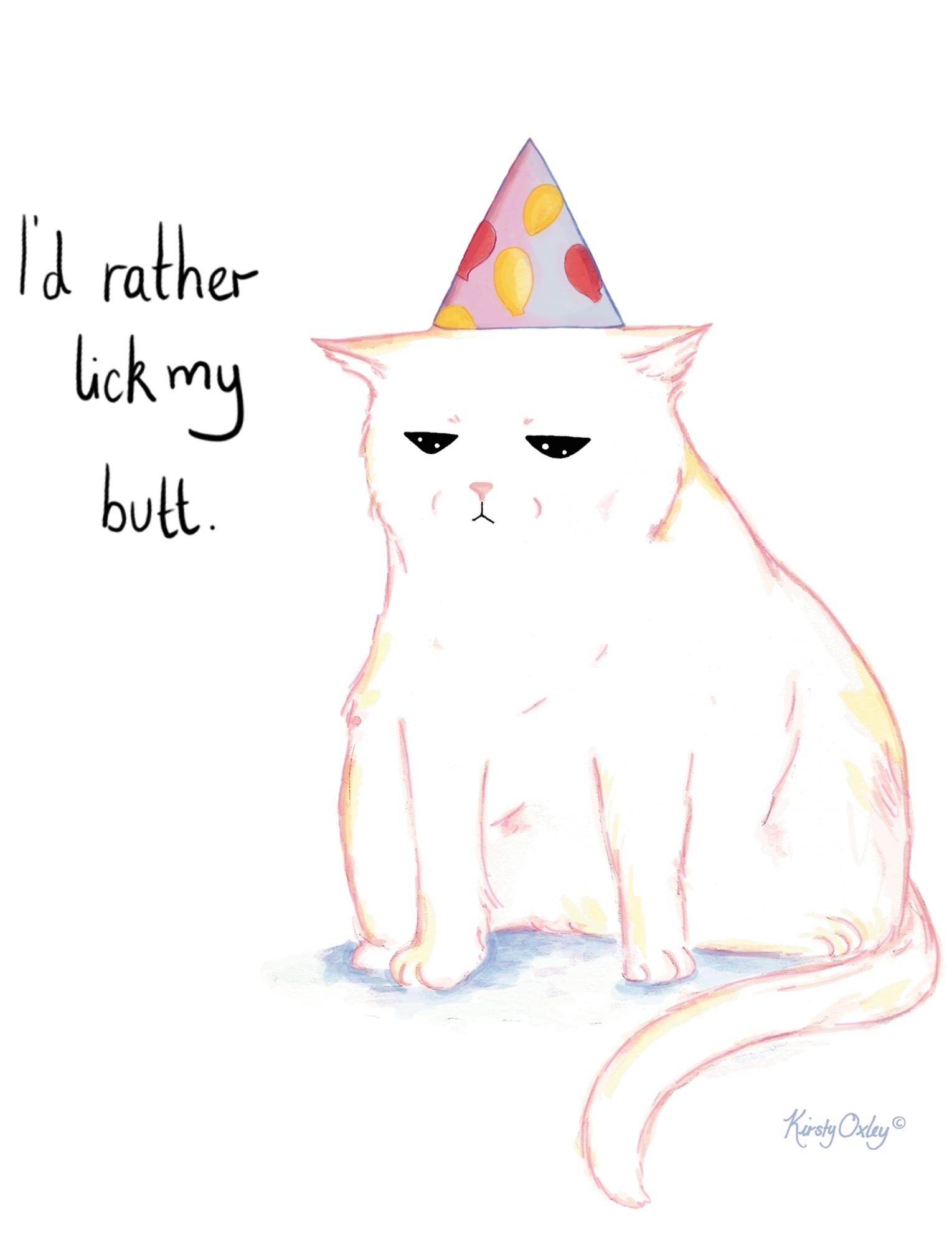 party cat web.jpg