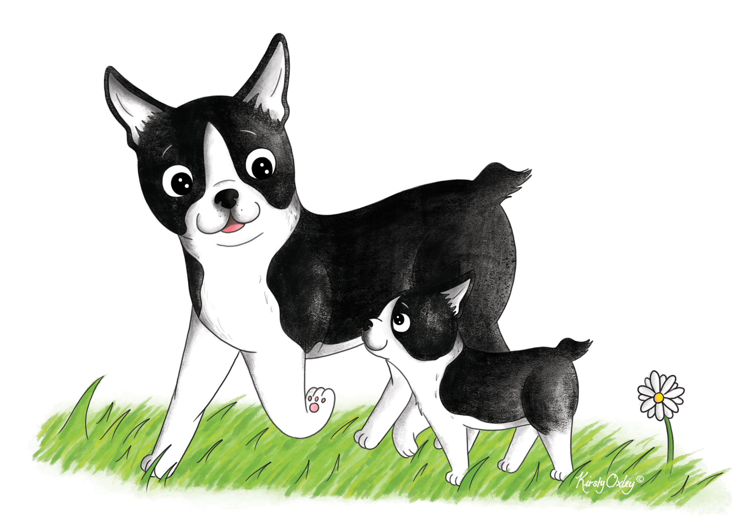 Mothers_Day_Boston_Terrier_Kirsty_Oxley_Illustration .jpg