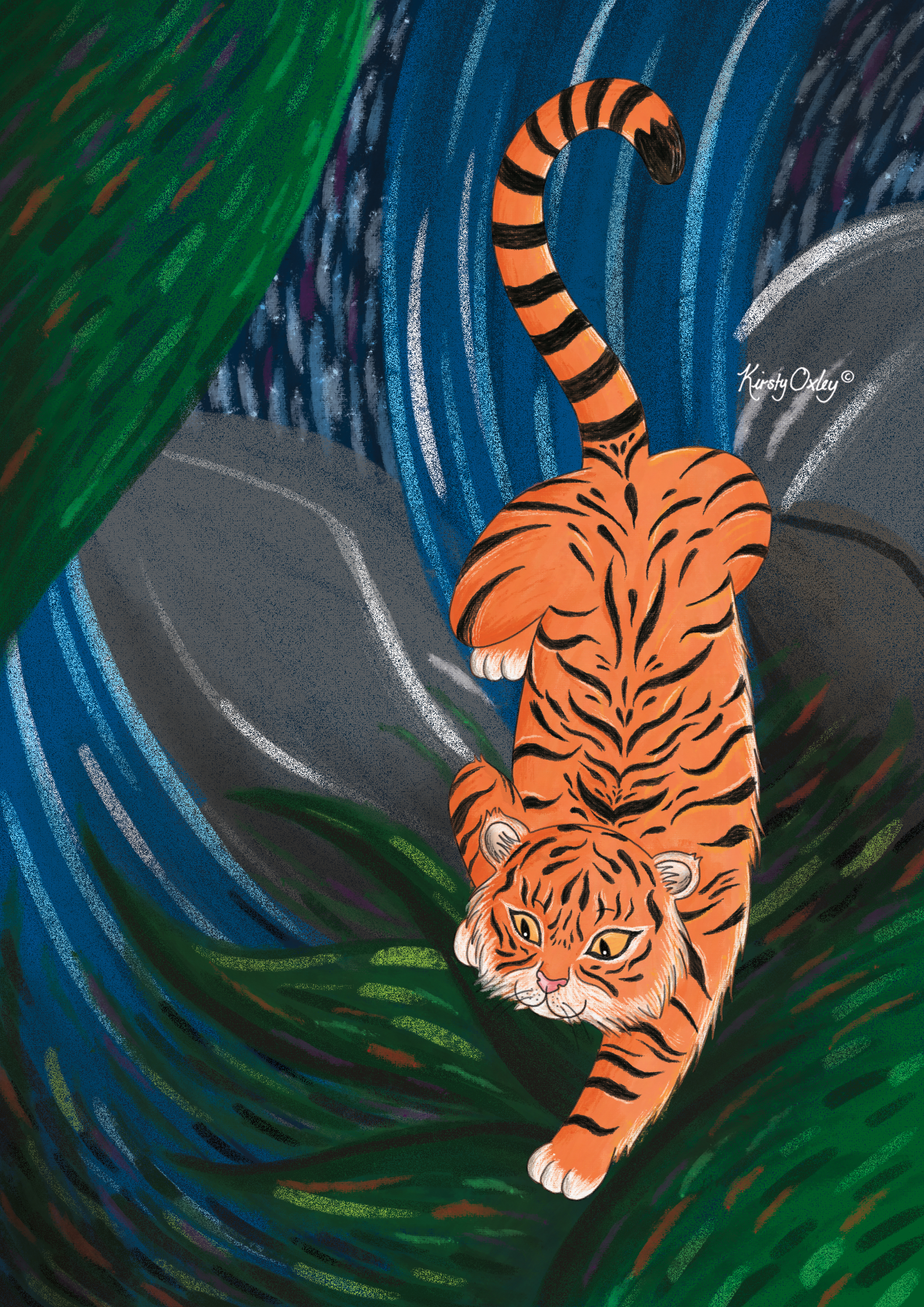 Tiger_Kirsty_Oxley_Illustration.jpg