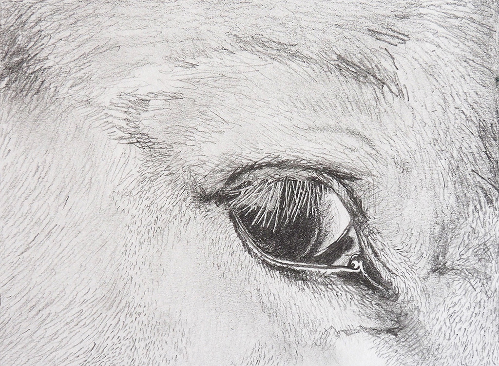 It Is Looking At You, 2016, pencil drawing on paper, 10 x  13 cm, Eli Maria Lundgaard .jpg