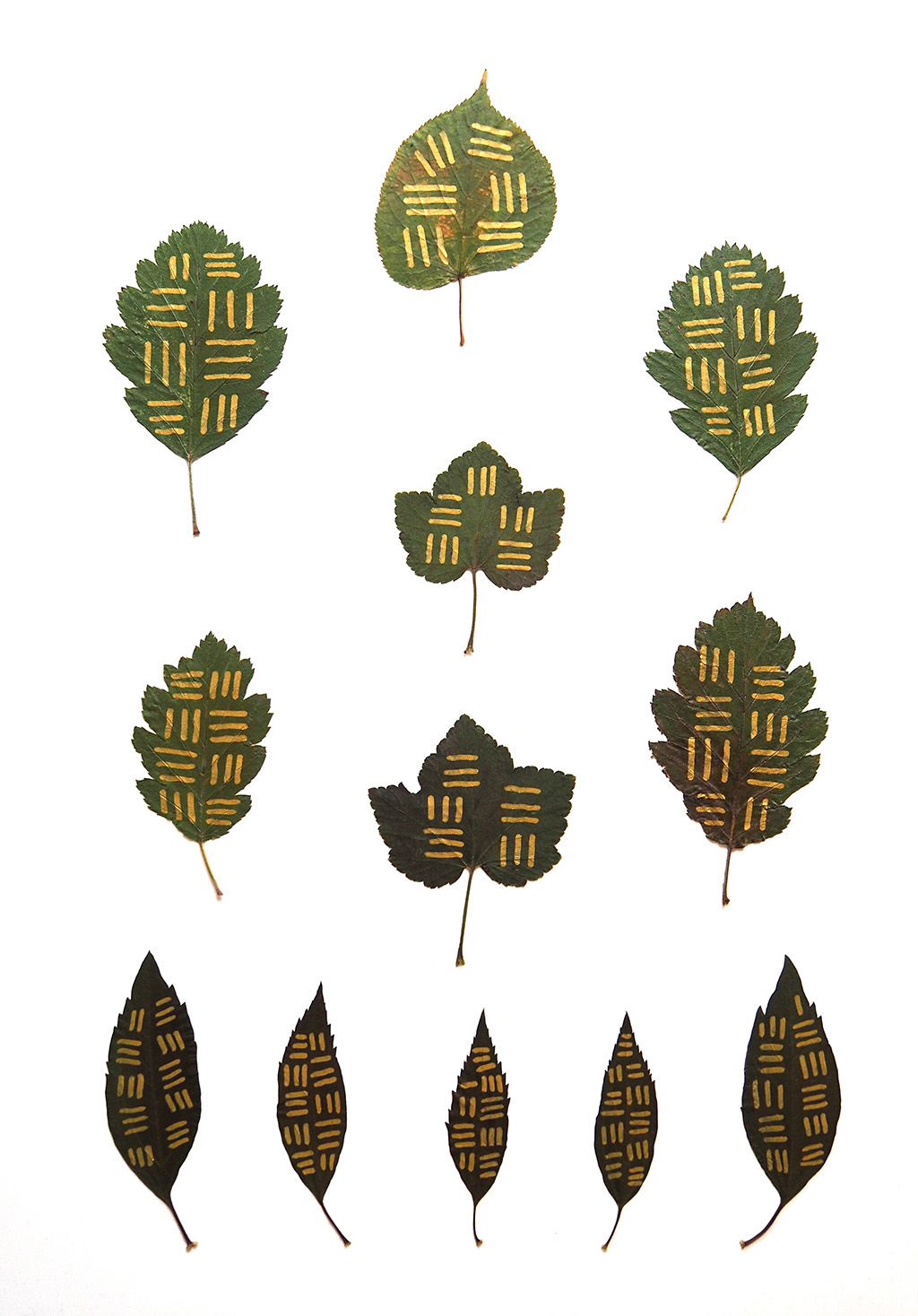 Mind System 1, 2016, acrylic paint and leaves on paper, 59  x 42 cm, Eli Maria Lundgaard.jpg
