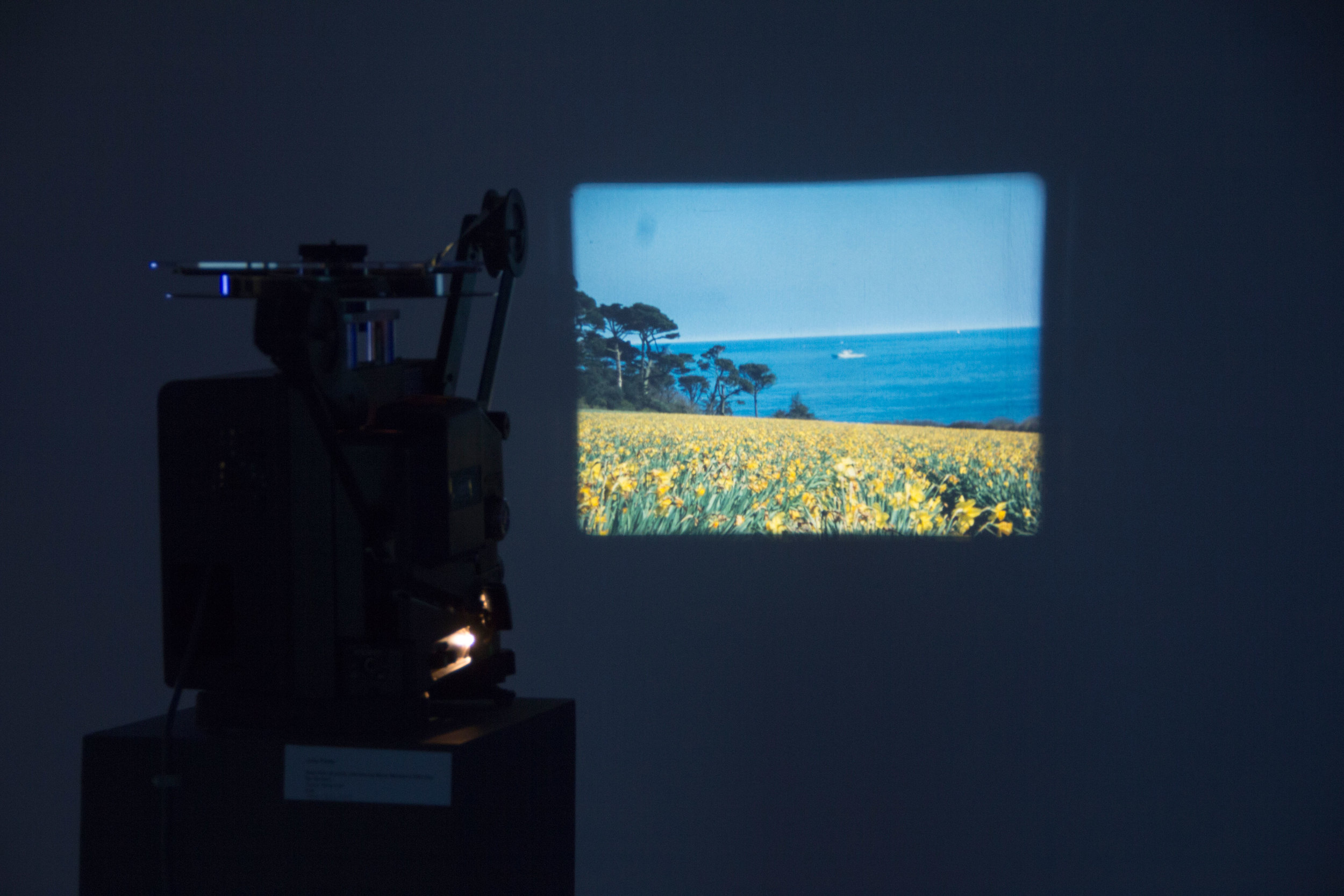 Projection-of-Boat-Film,-2015.jpg