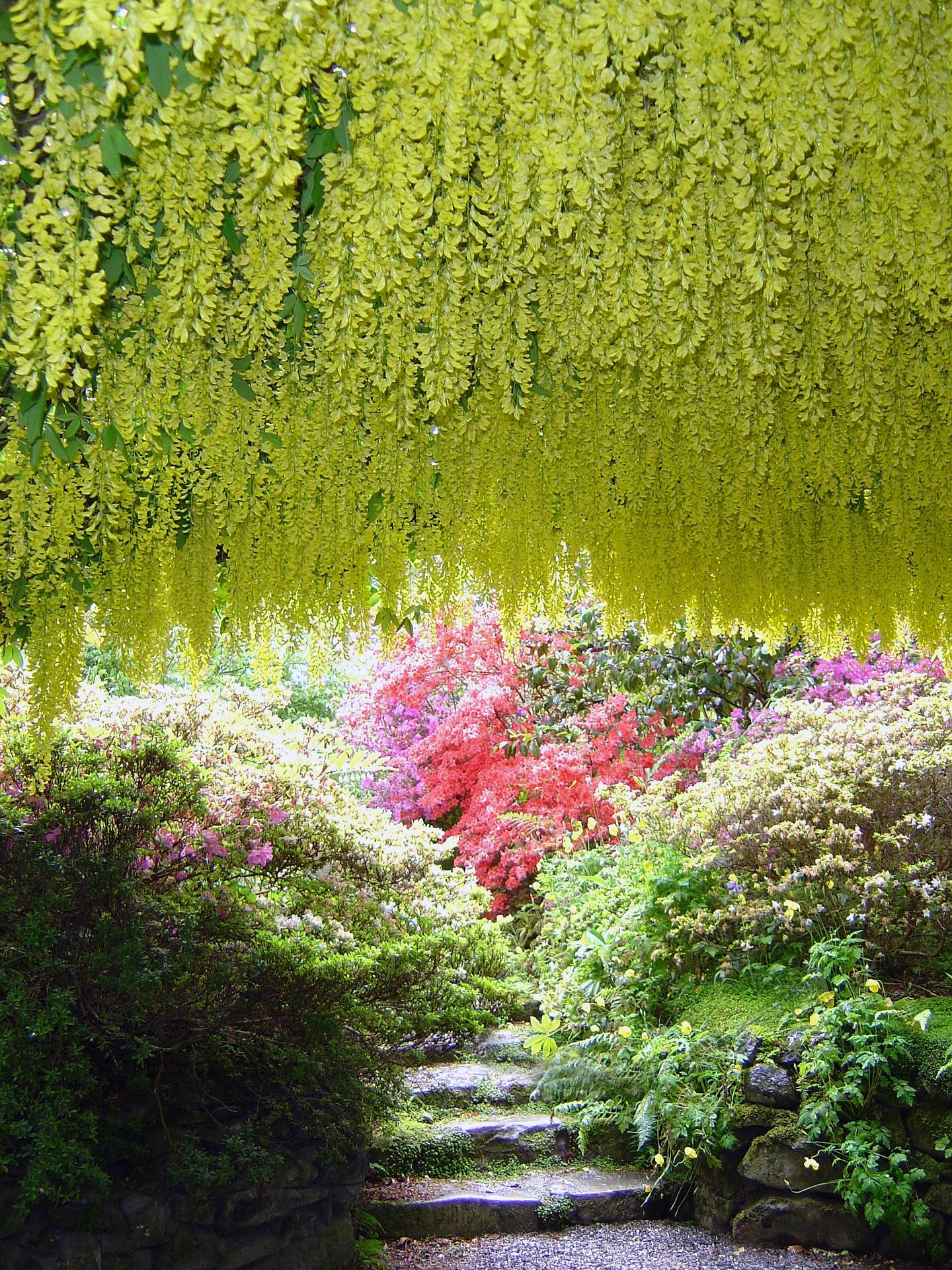 Bodnant Garden.jpg