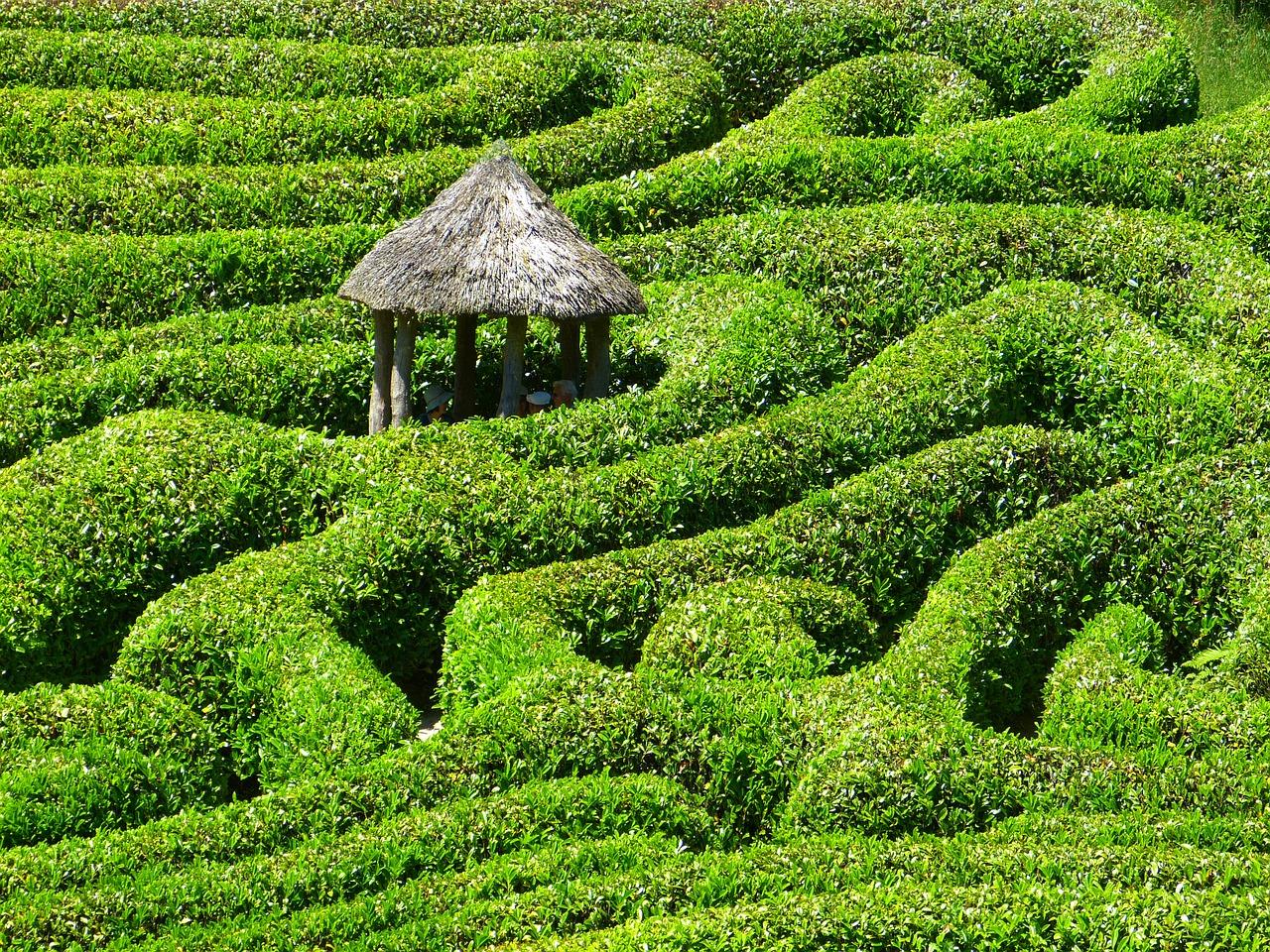 Glendurgan Garden.jpg