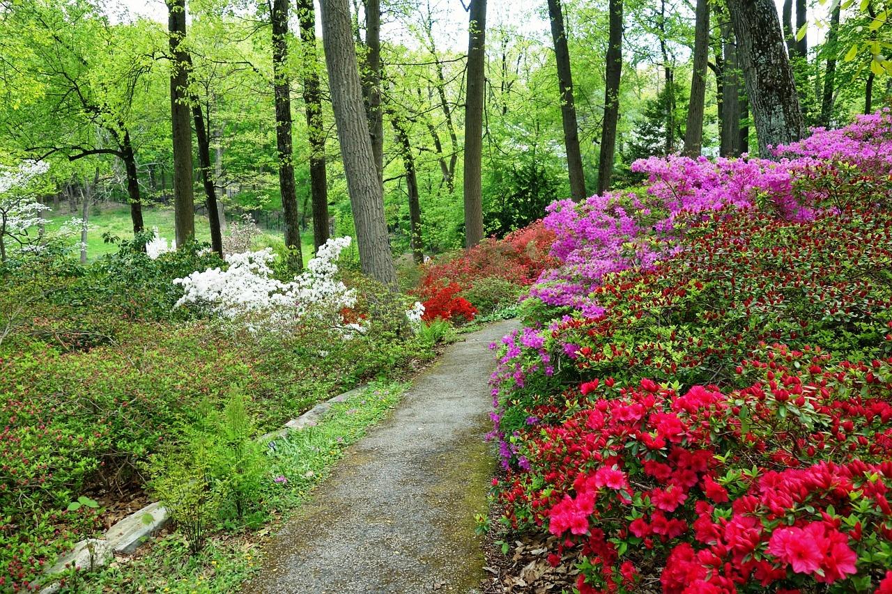 2 Devon - Arboretum.jpg