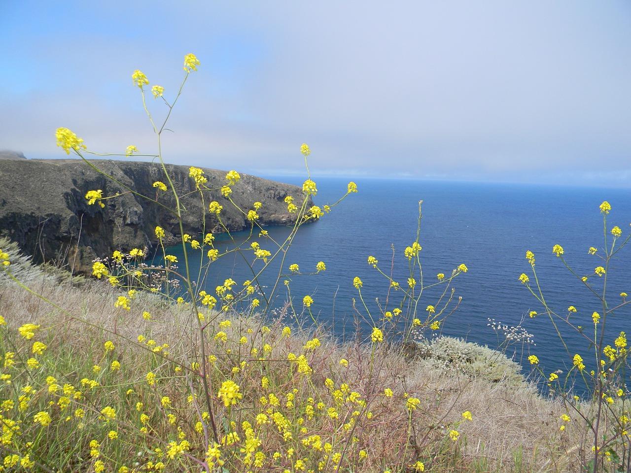 2 - channel-islands-Jersey-national-park.jpg
