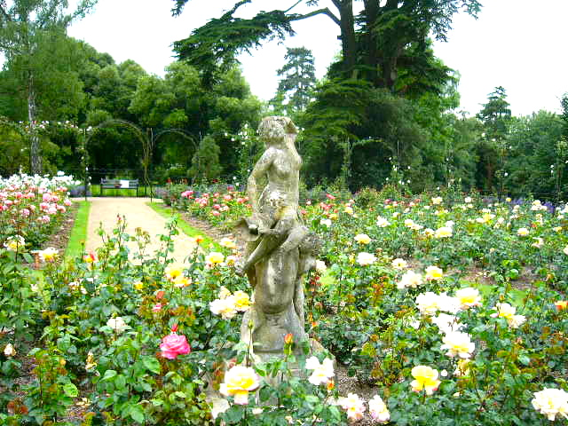 Cotswolds - Blenheim Rose Garden.jpg