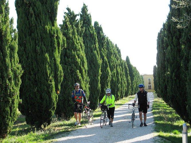 Greenbelt of Abruzzo - Agriturismo Loreto Aprutino.jpg