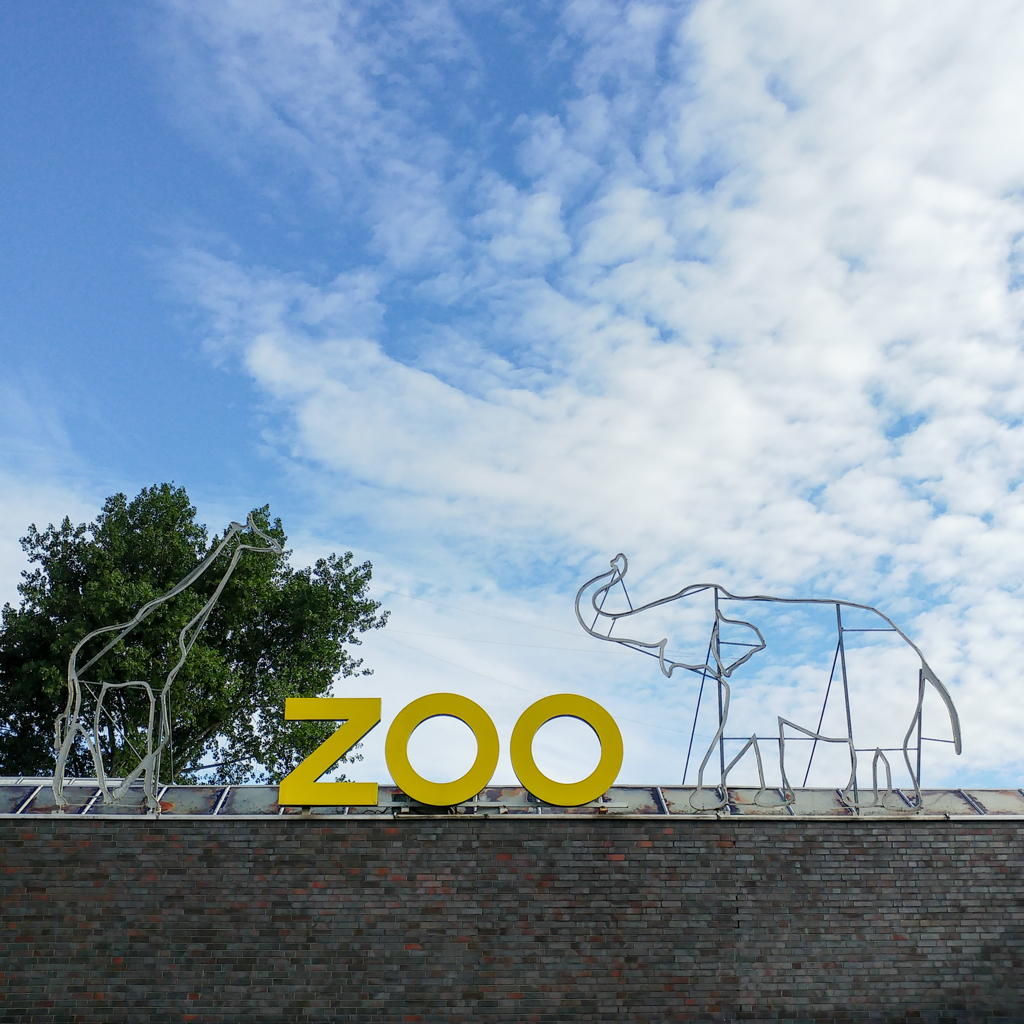 Fotokurs im Zoo