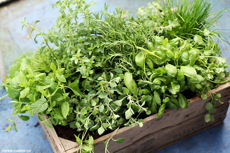 Herbs like basil, oregano, mint & rosemary can help stimulate blood circulation, and are pungent foods recommended for springtime by Chinese Dietetics.