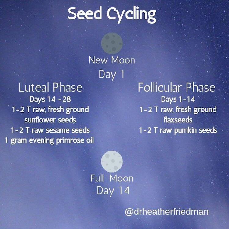 Seed Cycling.jpg