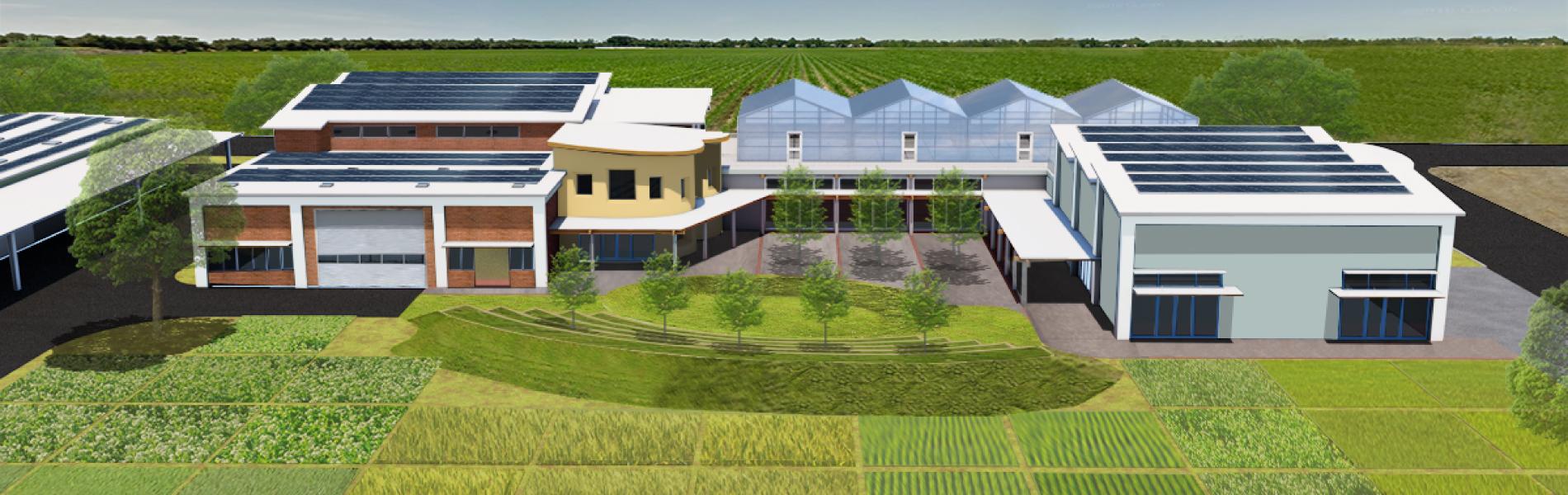 UCD-Plant-Innovation-2.jpg